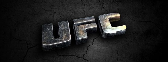 Top 10 Highest-Earning UFC Fighters in 2013