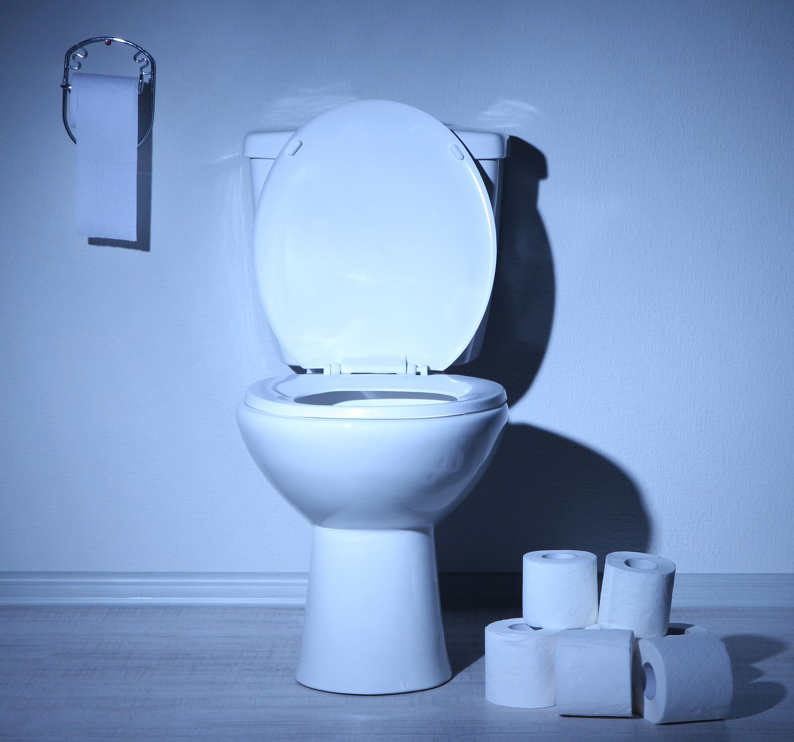 bigstock toilet bowl and toilet paper i