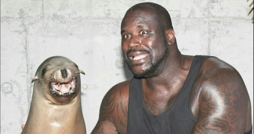 10 Weird Facts About Shaquille O'Neal You Didn't Know