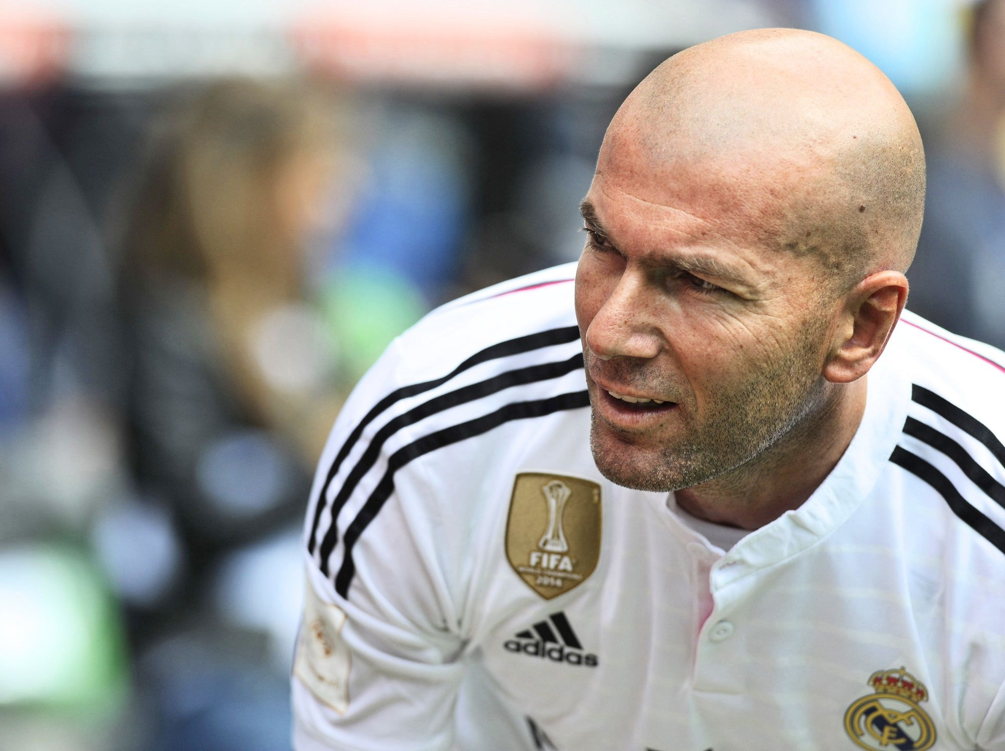 shutterstock_Zidane