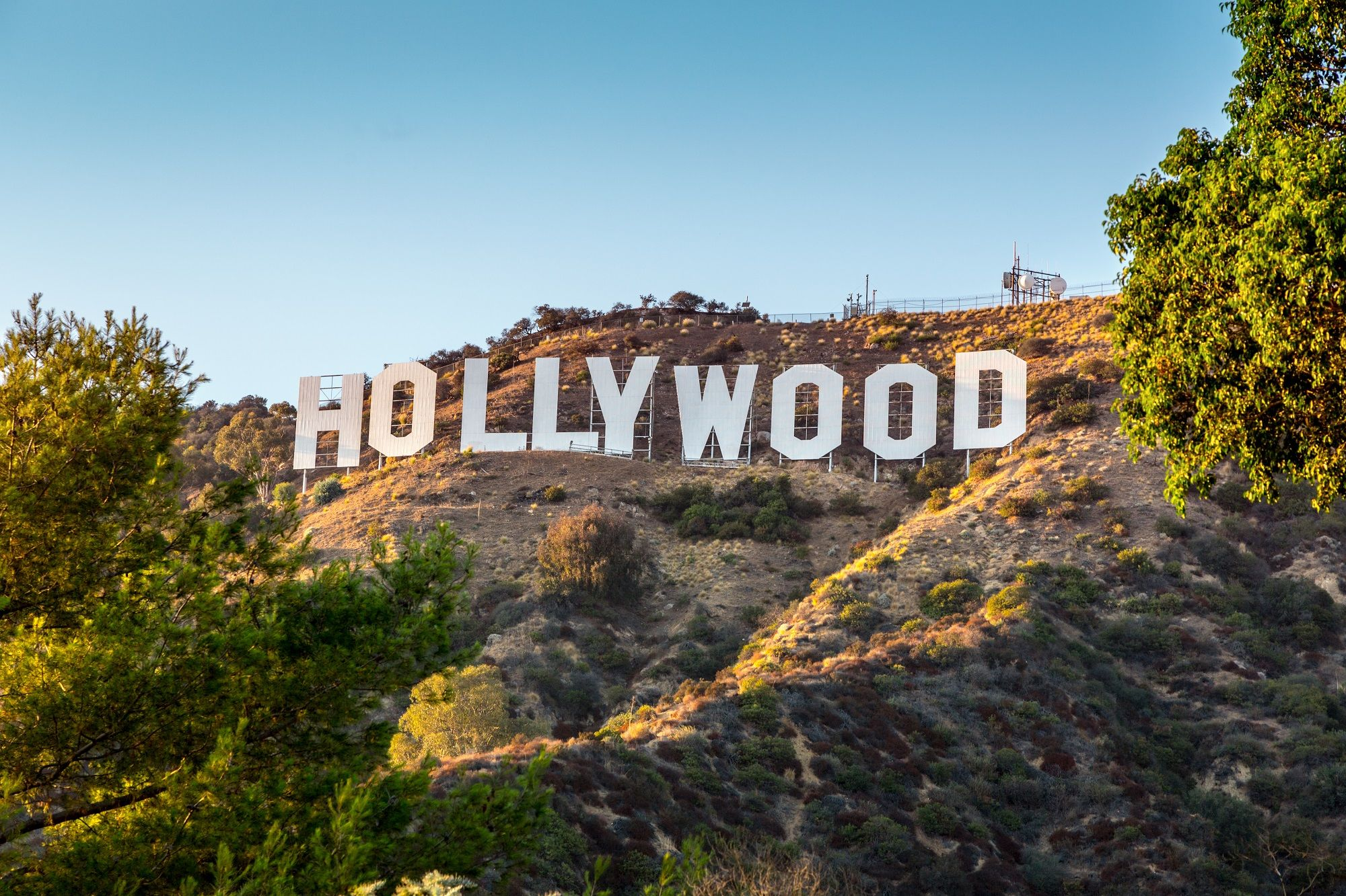 shutterstock_Hollywood