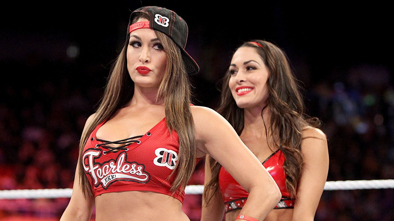 15 Things Fans Would Like to Forget About the Bella Twins