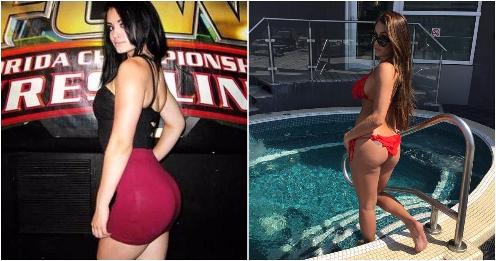 The Top 16 Wwe Diva Booty Revolutionaries Of All Time-3017