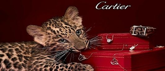The Top 10 Most Expensive Cartier Watches