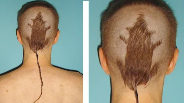 10 Worst Hairstyles That Shouldn't Exist